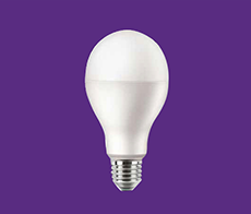 LED High Wattage Bulb